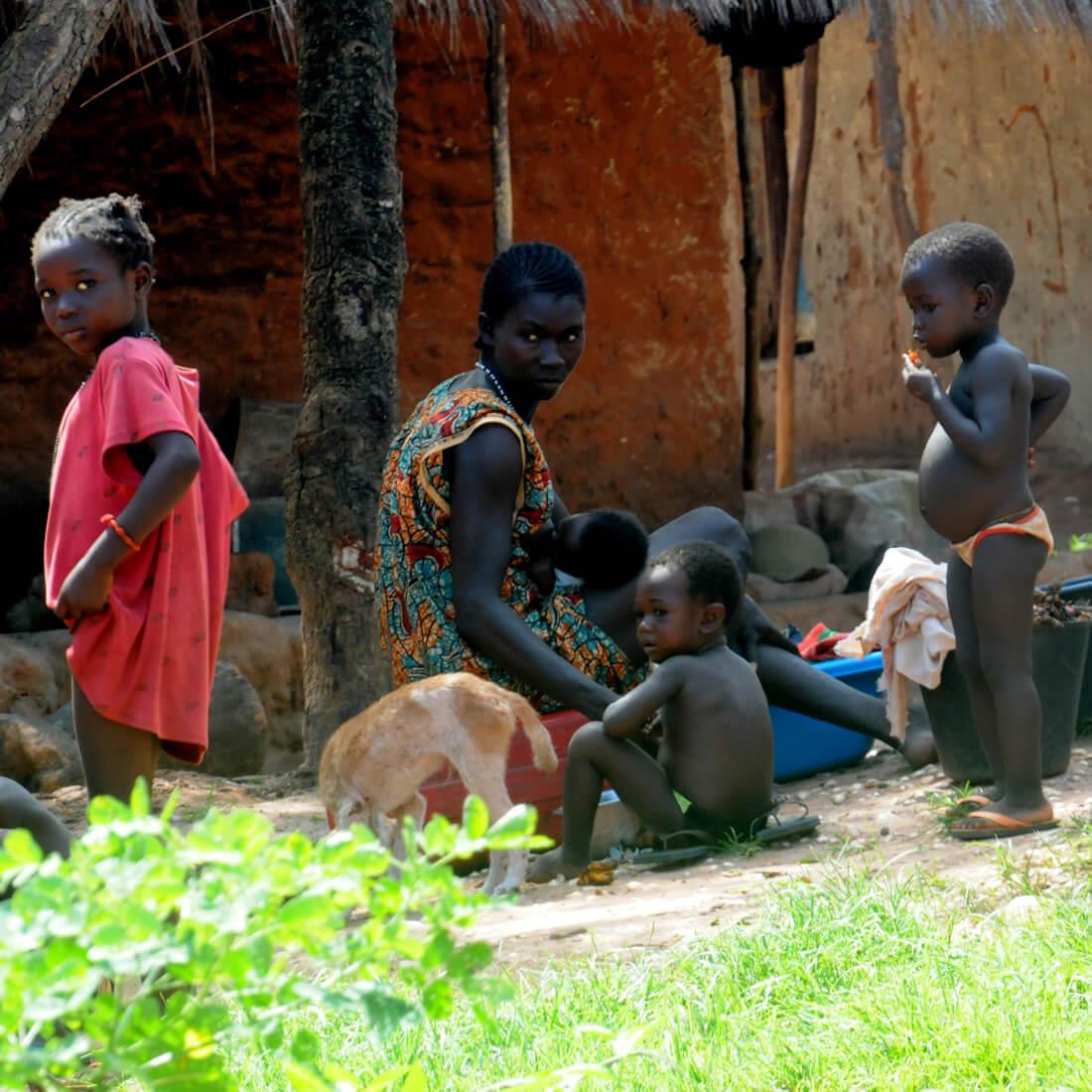 Guinea - Bissau